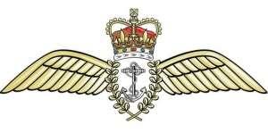 faaaa-wings